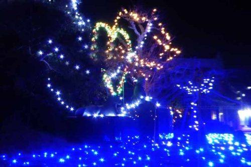 伏姫公園のイルミネーション